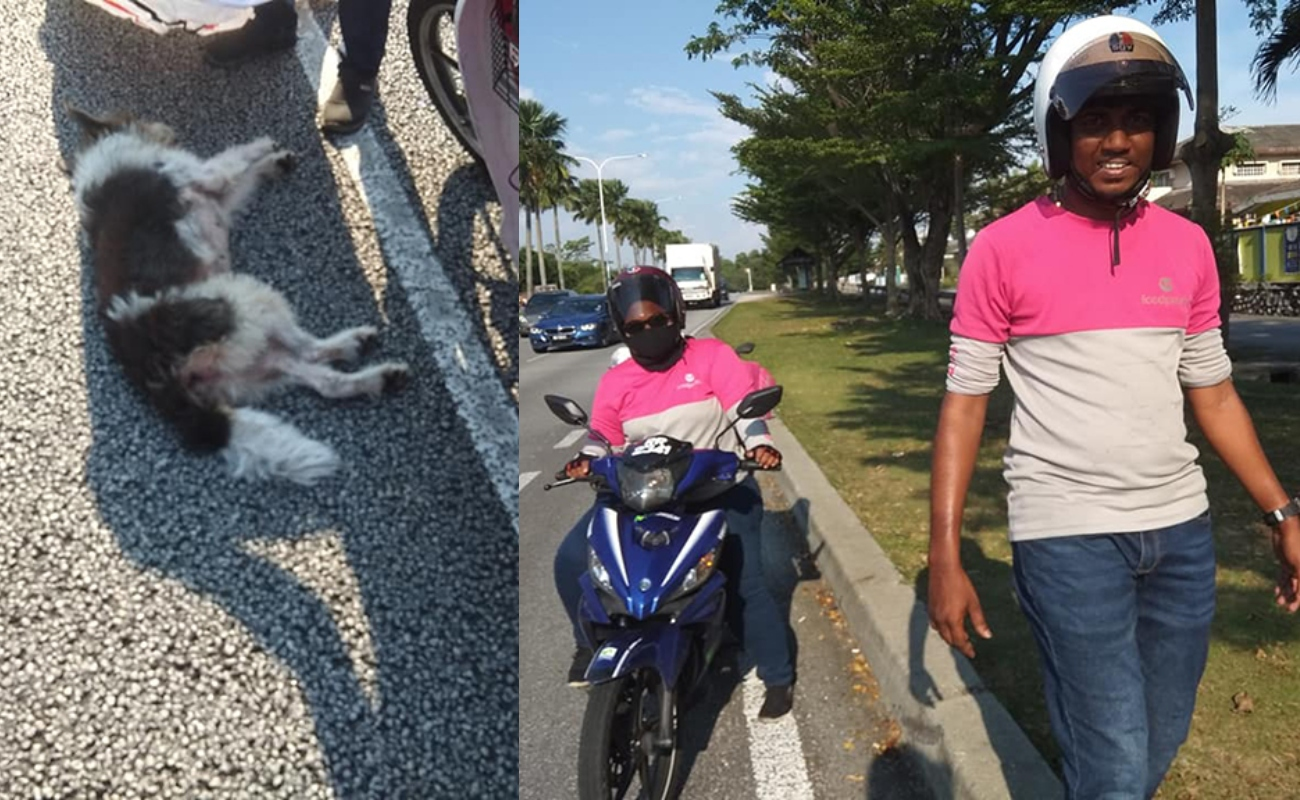Rider Foodpanda Tinggal Kerja Sementara Waktu Selamatkan Anjing